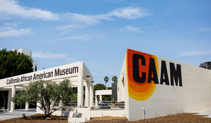 Pic of the California African American Museum